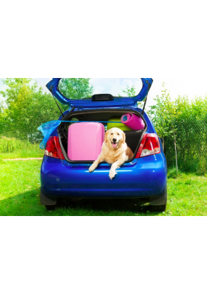 Mała Mata ochronna do samochodu  (105x80x30 cm)